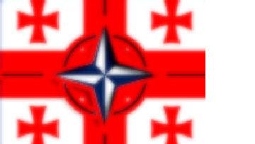 Грузия готовит почву для скорейшего вступления в НАТО picture