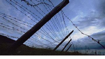 Пыточные колонии Путина picture