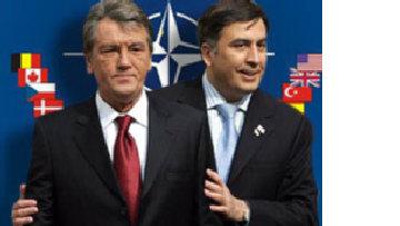 Украина и Грузия: перспективы членства в НАТО picture