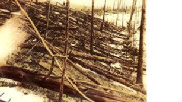 Странные события в долине реки Тунгуски picture