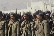 Защитники революции