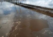 Нефтяное пятно движется по Неве в Санкт-Петербурге