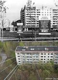 В городе Припять после аварии на Чернобыльской АЭС