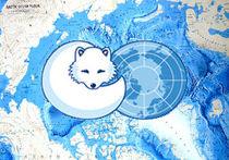 Арктический совет должен играть более активную роль
