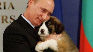 Болгарский премьер-министр подарил щенка Владимиру Путину