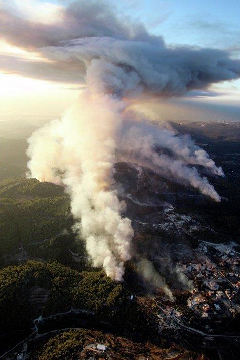 Крупный лесной пожар на севере Израиля