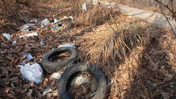 Дорогу на городское кладбище в Приморье превратили в свалку мусора