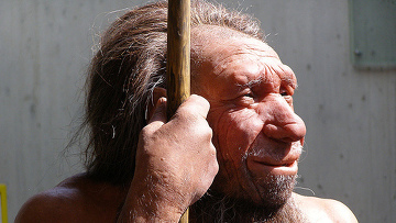 Где и когда вымерли неандертальцы?