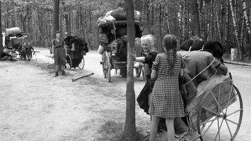 Трагедия беженцев рейха