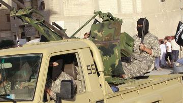 Арабам пора взять на себя ответственность в борьбе с халифатом