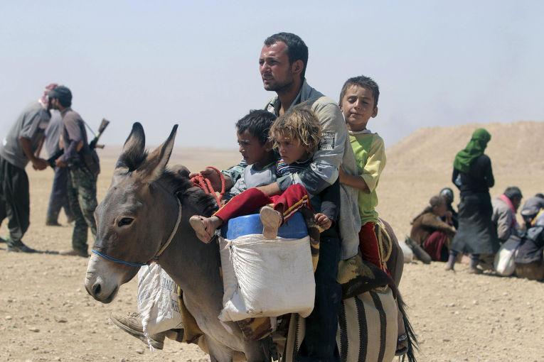 Беженцы-езиды на границы Ирака и Сирии