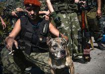 Ополченец в Донецке с собакой по имени Девка