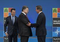 Петр Порошенко на саммите НАТО в Уэльсе