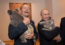 Коалы на руках у Владимира Путина и Тони Эботта, саммит G20 в Астралии