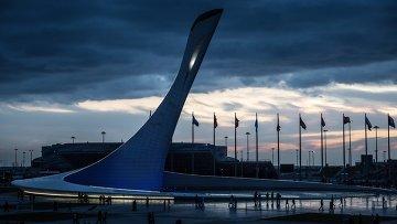 """Чаша Олимпийского огня во время открытия скульптурной композиции """"Стена чемпионов Игр"""" в Сочи"""