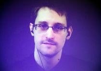 Эдвард Сноуден во время видеомоста между Москвой и Парижем, организованного международной правозащитной организацией Amnesty International