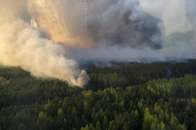 """Вид с вертолета на пожар в """"Чернобыльской пуще"""""""