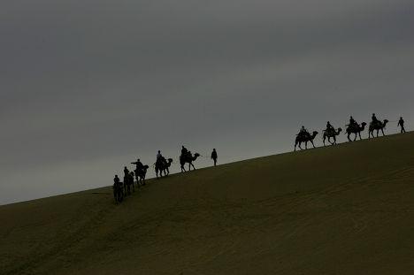 Верблюды в пустыне Гоби рядом с городом Дуньхуан