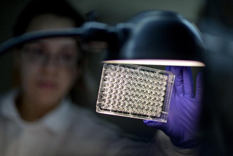 Проверка бактерий на устойчивость к антибиотикам