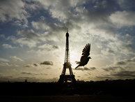 Эйфелева башня в дни национального траура в Париже
