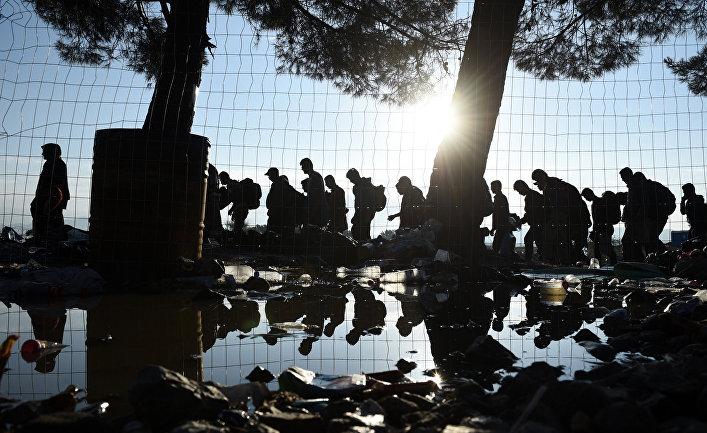 Беженцы идут из деревни Идомени на севере Греции в сторону Македонии