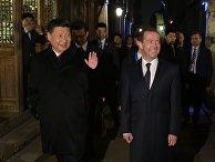 Премьер-министр РФ Д.Медведев принял участие в заседании Совета глав правительств стран ШОС