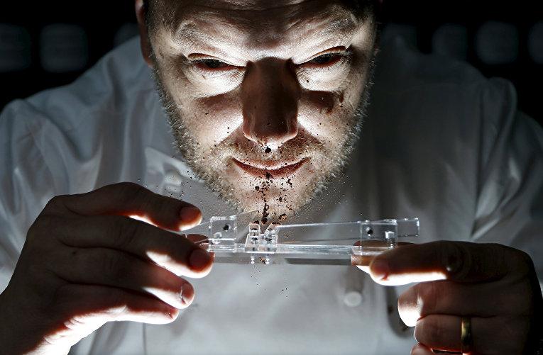 Бельгийский шоколатье Доминик Персун вдыхает шоколадную пудру на своей фабрике в Брюгге