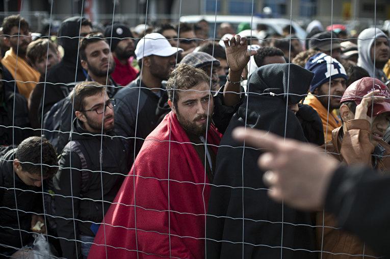 Беженцы на австрийско-венгерской границе ожидают автобусы, которые отвезут их на границу с Германией