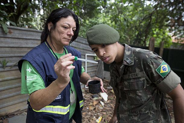 Медицинский работник показывает солдату личинки комаров вида Аedes Аegypti
