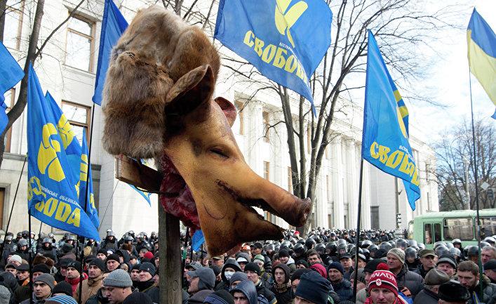 Сторонники партии «Свобода» у здания Верховной Рады в Киеве