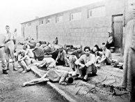 Узники немецкого лагеря смерти Маутхаузен в дни войны.
