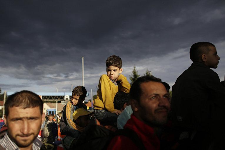 Беженцы пересекают границу Хорватии со Словенией