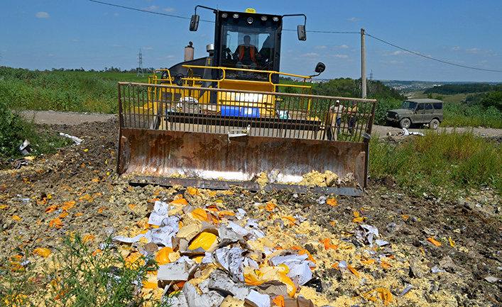 Уничтожение санкционной продукции в Белгородской области
