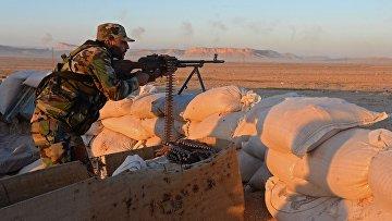 Боевые действия сирийской армии в окрестностях Пальмиры