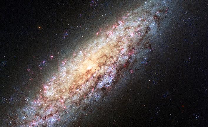 Спиральная галактика NGC 6503