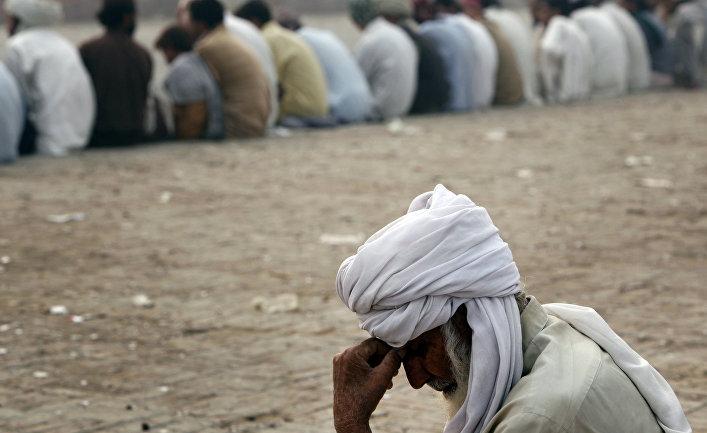 афганец талибан