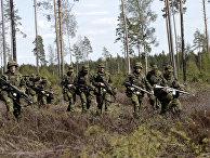Учения НАТО «Еж-2015» в Эстонии