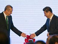 Председатель КНР Си Цзиньпин и президент Турции Реджеп Тайип Эрдоган