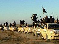 "Колонна автомобилей с боевиками ""Исламского государства"" (запрещена в РФ) на пути из Сирии в Ирак"