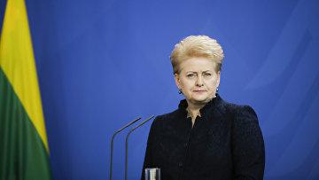 Президент Литвы Даля Грибаускайте во время пресс-конференции