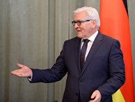 Министр иностранных дел Германии Франк-Вальтер Штайнмайер на пресс-конференции в Москве. 23 марта 2016