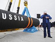 Перед началом торжественной церемонии, посвященной началу строительства газопровода «Северный поток»
