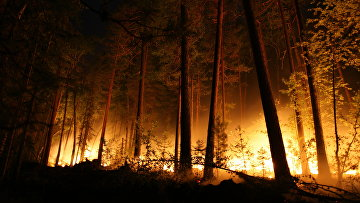 Тушение лесных пожаров в Красноярском крае
