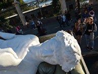 Перевозка копии статуи Давида Микеланджело