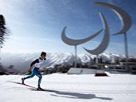 Паралимпиада 2014. Лыжные гонки. Мужчины. 20 км