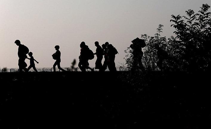 Беженцы после пересечения сербско-венгерской границы рядом с городом Реске