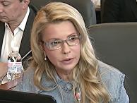 Тимошенко о бюджете-2017