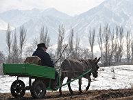Недалеко от села Кой-Таш в Киргизии