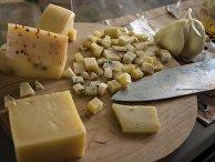 Сырная продукция на сырном фестивале в Истринском районе Московской области