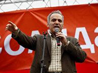 Сопредседатель движения «Солидарность» Гарри Каспаров